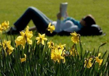 Spring in Austra