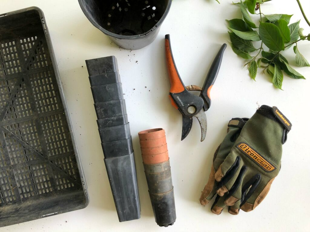 Gardening tools like gloves, clipper, and pot