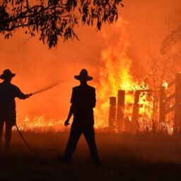 Basic Steps to Saving Your Home From Fires