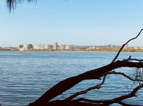 Looking towards Maroochydore from Mudjimba Dog Beach