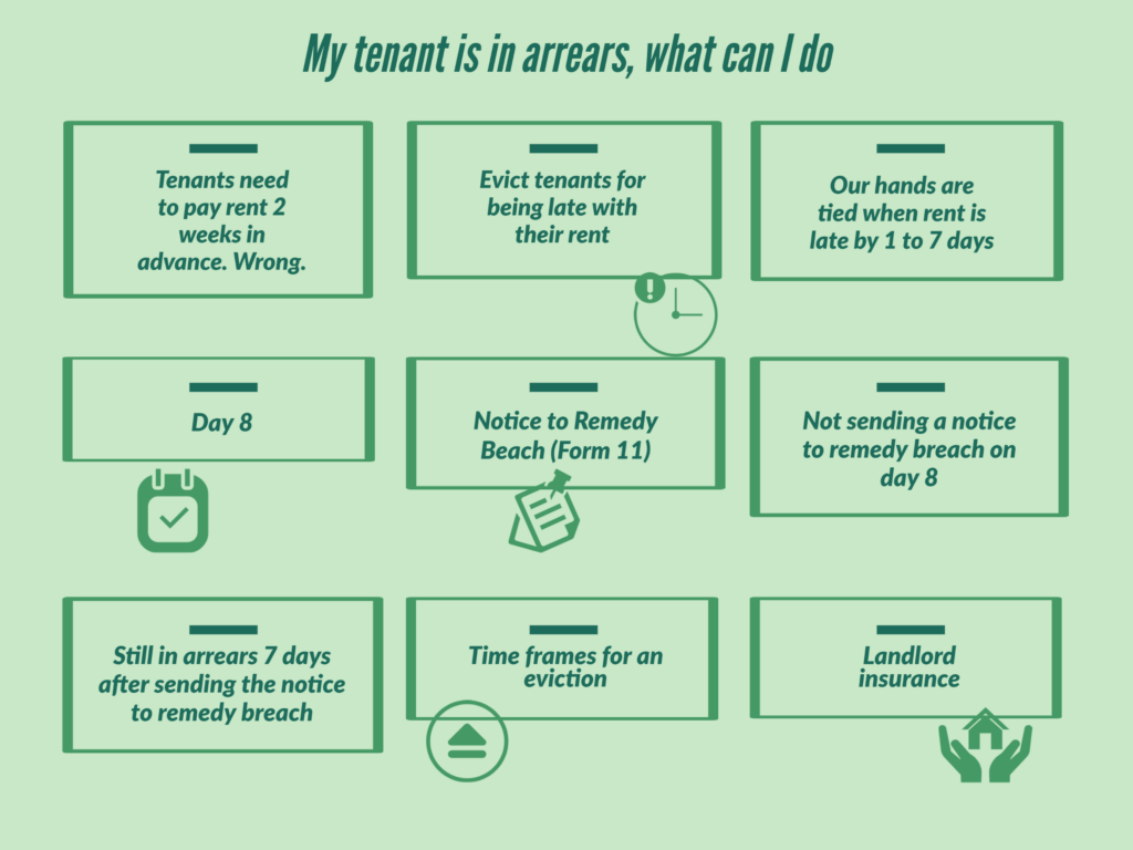 Infographic on My tenant is in arrears, what can I do