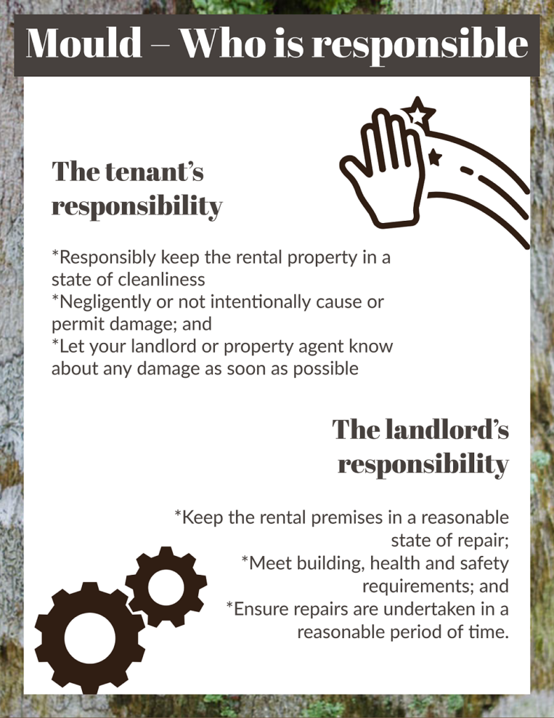infographic on Mould – Who is responsible
