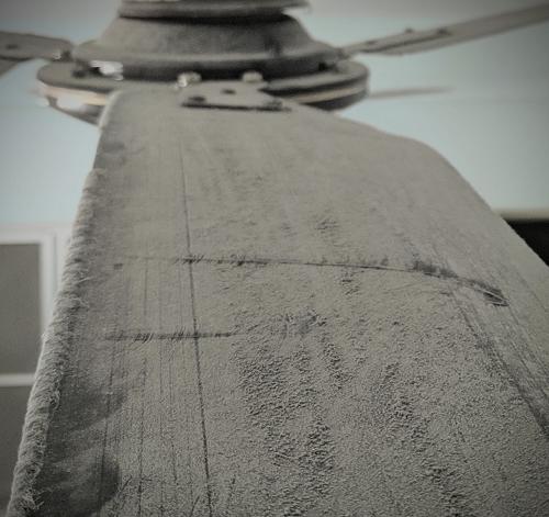 dusty fan blade
