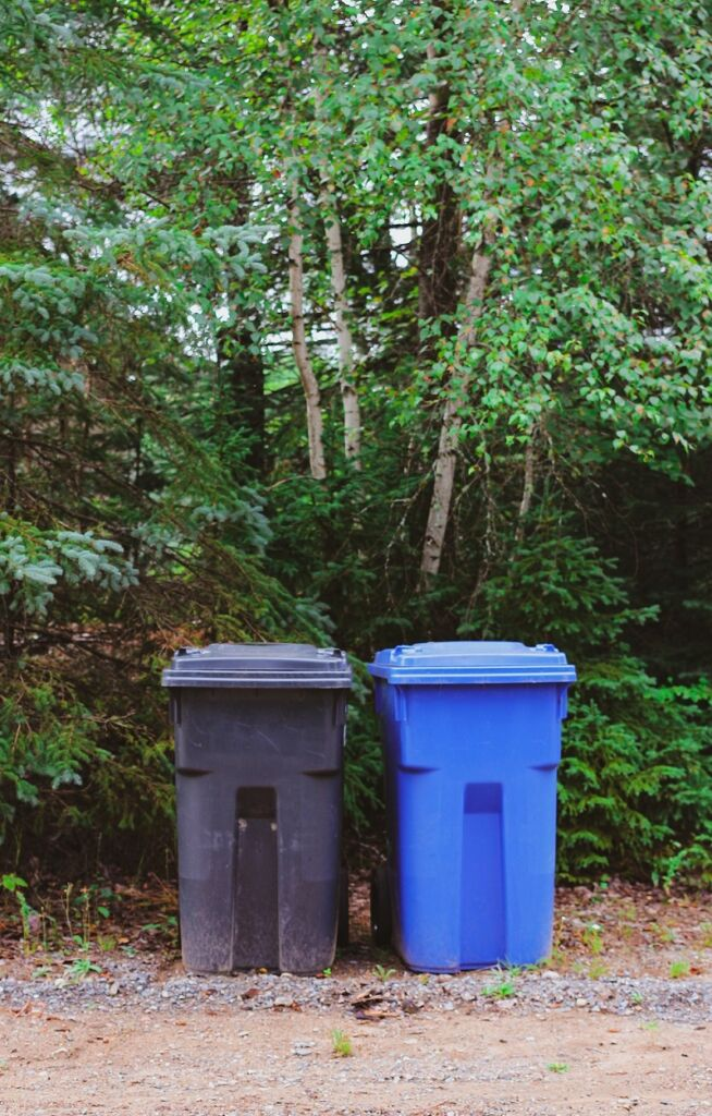 black and blue bins outside the woods