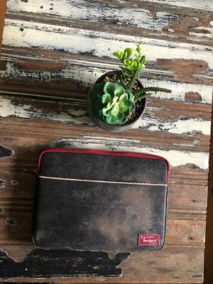 Laptop bag with mould in wet season