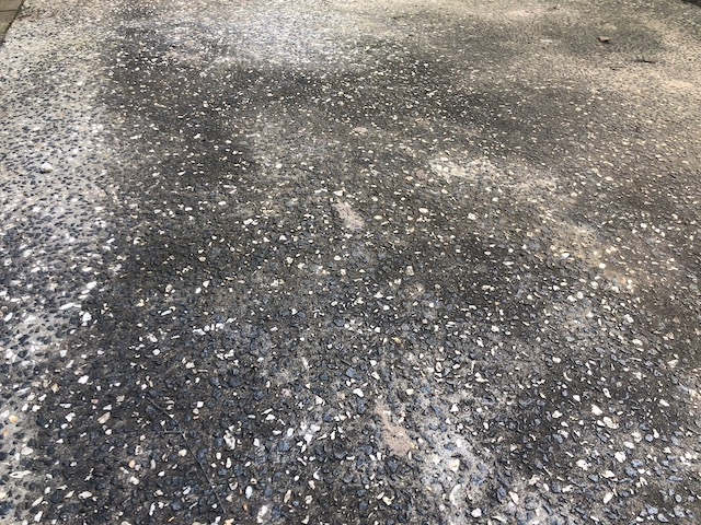 Pathway with black mould in rainy season
